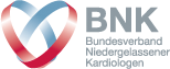 BNK_logo_neu